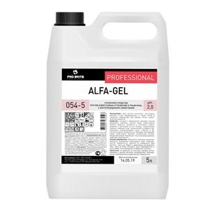 Купить Средство чистящее для сантехники «ПРО-БРАЙТ» - Alfa-Gel, 5 л в Омске, в магазине Лидер-Март, ЛидерМарт